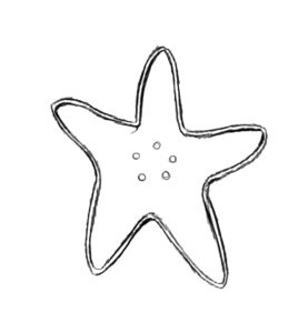 st 3 277x300 How to Draw a Starfish