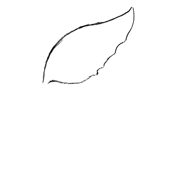Simple Wing Drawing Now Draw Your Bottom Wing