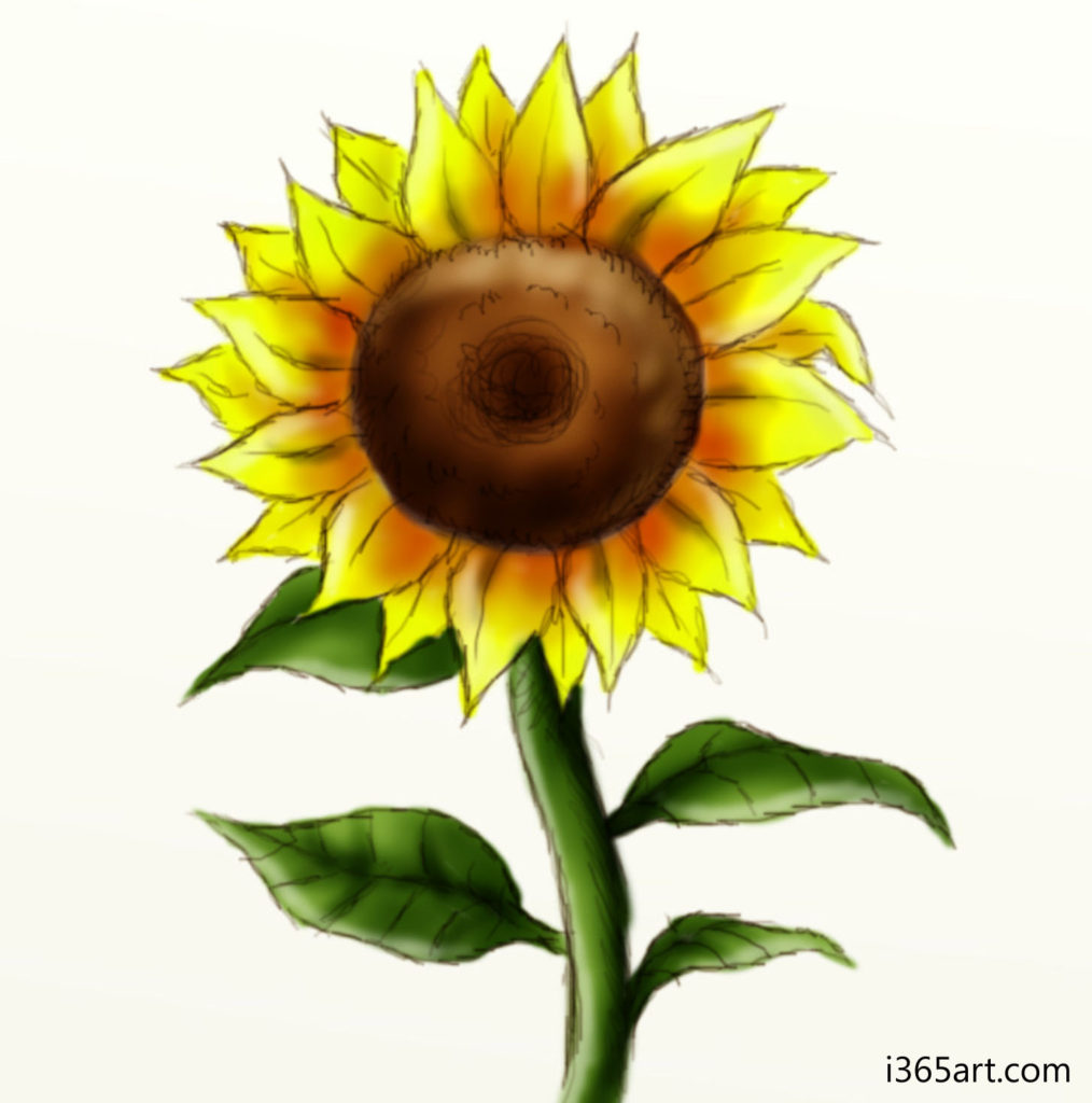 sunflower 1014x1024 Day #215 Random Art and Hubpages