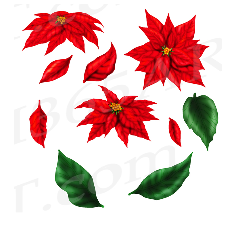 red-poinsettia-set-preview