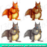 squirrel-preview