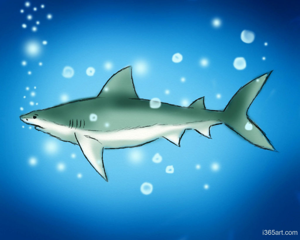 deap sea shark