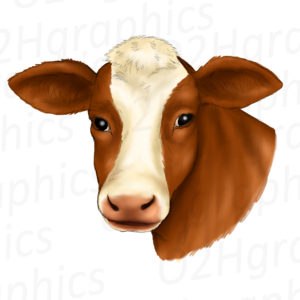 Brown Cow Clipart